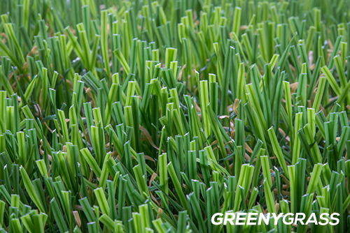หญ้าเทียมระบายน้ำไว