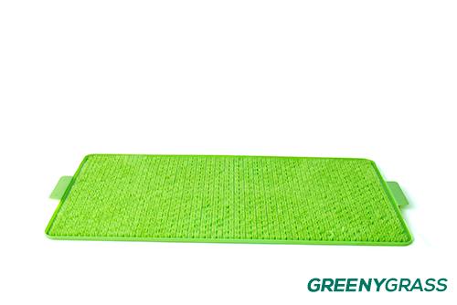 หญ้าเทียมสำหรับสุนัข