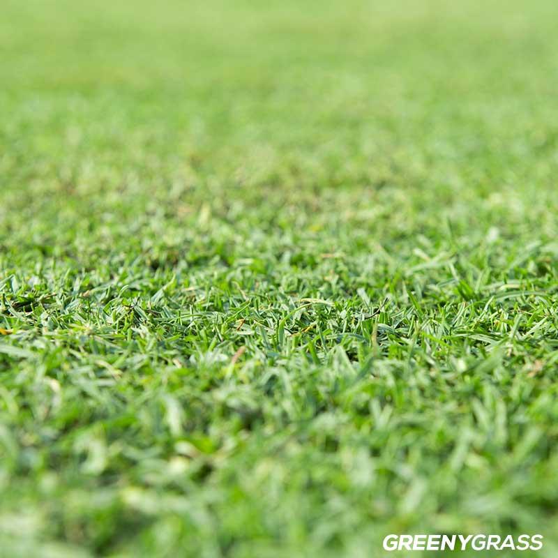 วิธีปูแผ่นหญ้าเทียมผสม