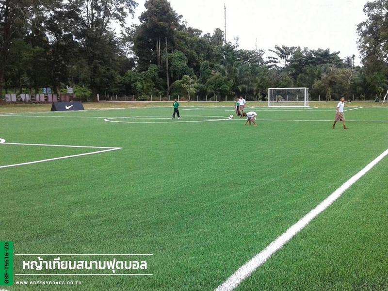 สนามฟุตบอลหญ้าเทียม โรงเรียนปากวีป จ.พังงา