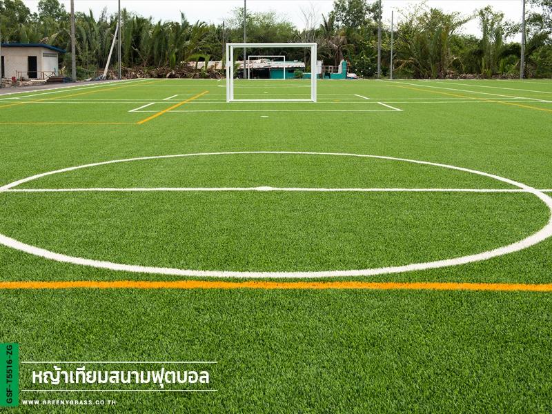 สนามฟุตบอลหญ้าเทียม จังหวัดสมุทรสงคราม