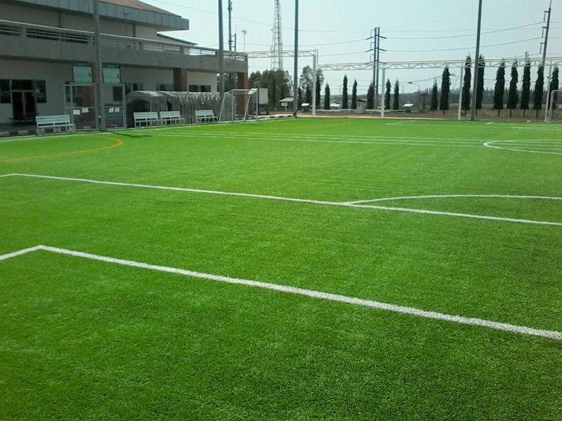 สนามฟุตบอลหญ้าเทียม บริษัทแอลจี