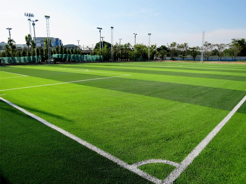สนามฟุตบอลหญ้าเทียม ปตท.เคมิคอล ระยอง