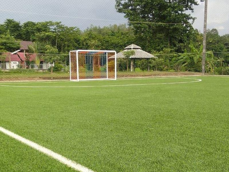 สนามฟุตบอลหญ้าเทียม แม่ริม เชียงใหม่