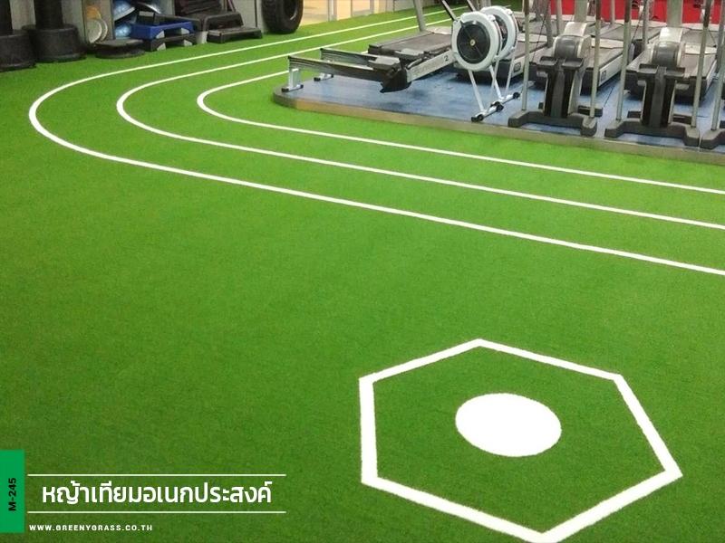 พื้นหญ้าเทียม Fitness First เดอะมอลล์โคราช