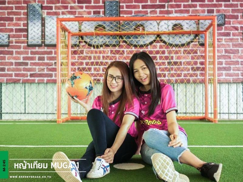 สนามฟุตซอลหญ้าเทียม goal indoor soccer