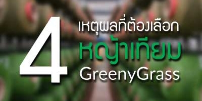 4 เหตุผลที่ต้องเลือก หญ้าเทียมกรีนนี่กราส