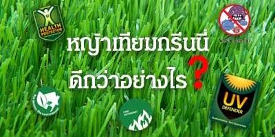 หญ้าเทียมกรีนนี่ ดีกว่าอย่างไร?
