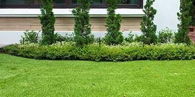 จัดสวนยุคใหม่ ไม่ง้อน้ำ ไม่ง้อแดด ง่ายๆ ด้วยหญ้าเทียมกรีนนี่