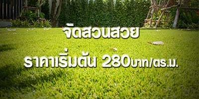 หญ้าเทียม ราคาถูก เดือนสิงหาคม 59