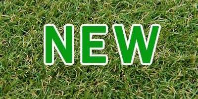 เปิดตัว หญ้าเทียม FB-150 รุ่นใหม่ ราคาถูก