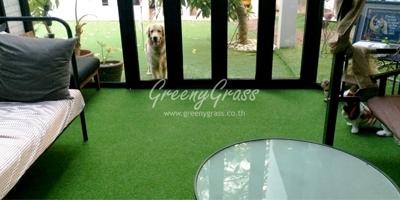 จัดสวนหญ้าเทียม/หญ้าเทียมแต่งสวน ทำไมต้องเลือก หญ้าเทียม Greenygrass ??