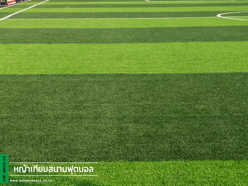 สนามฟุตบอลหญ้าเทียม ทีเอส แพรกษา ฟุตบอลคลับ