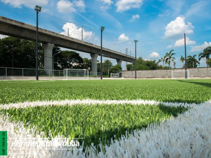 สนามฟุตบอลหญ้าเทียมเช่าเตะ พัฒนาการ