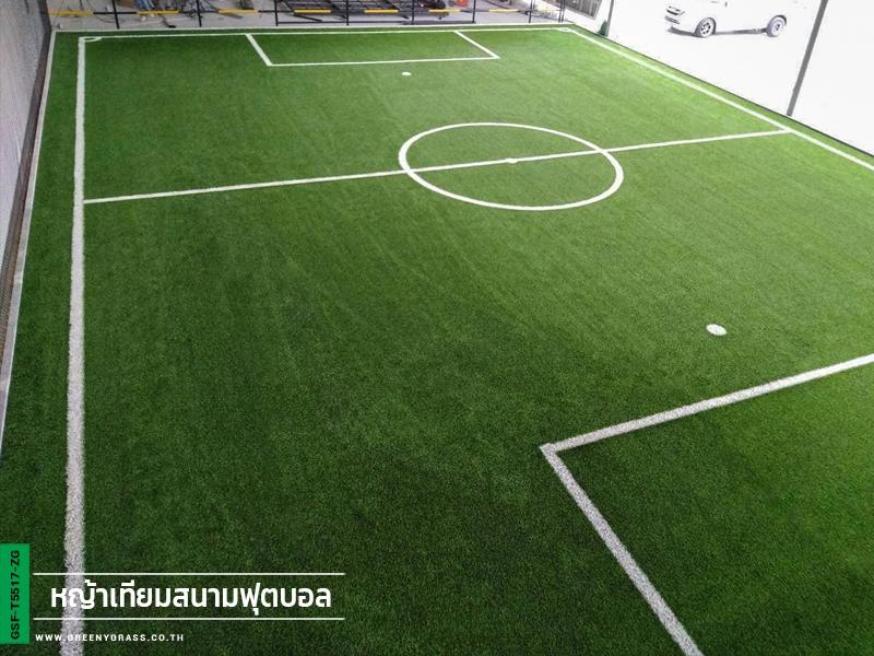 สนามฟุตบอล decathlon บางนา