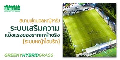 สนามฟุตบอลหญ้าจริง ระบบหญ้าไฮบริดแห่งแรกในประเทศไทย