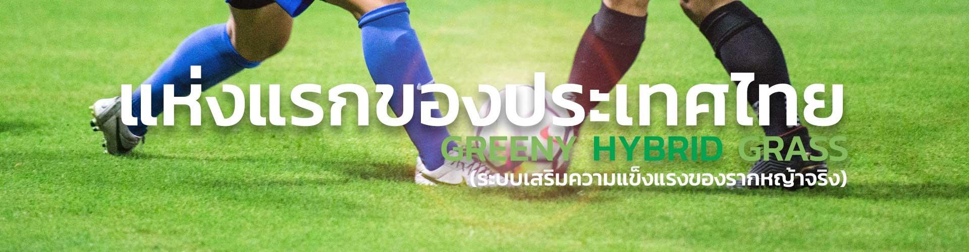 สนามฟุตบอลหญ้าจริงผสมหญ้าเทียม