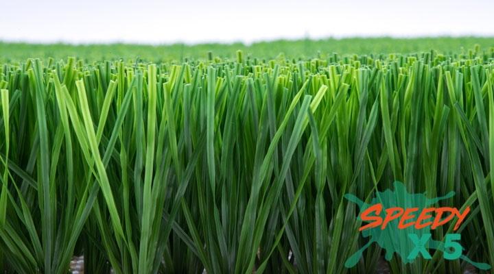 หญ้าเทียม LV-31 (3 cm.)