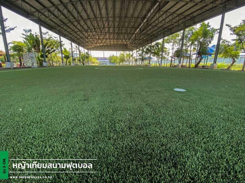 สนามฟุตบอลหญ้าเทียม โรงเรียนเฉลิมพระเกียรติสมเด็จศรีนครินทร์