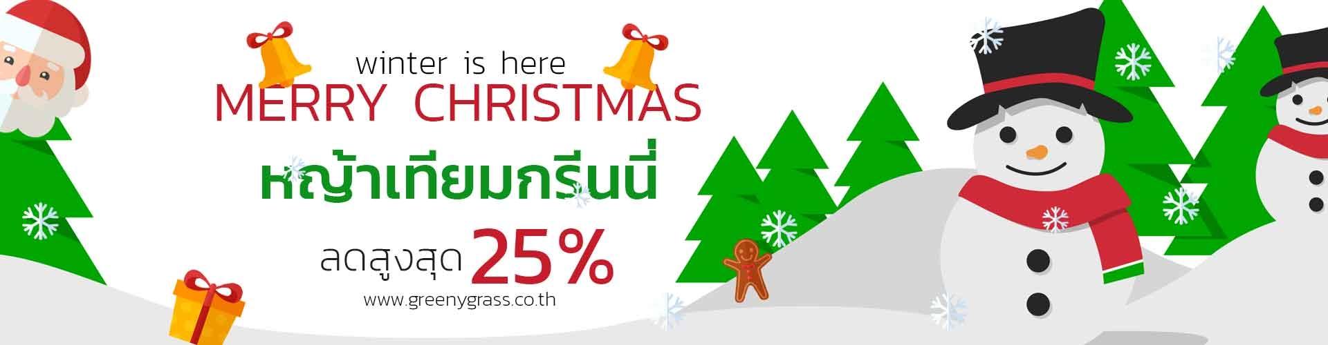 christmas up to 25%