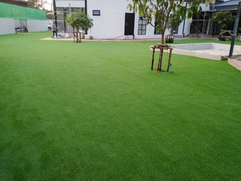 สนามหญ้าเทียม ศูนย์เสริมพัฒนาการเด็กก่อนวัยเรียน พรานนก