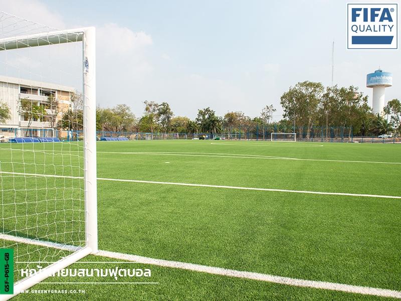 สนามฟุตบอลหญ้าเทียม โรงเรียนกีฬาจังหวัดชลบุรี (FIFA QUALITY)