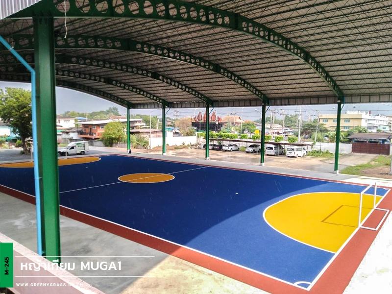 สนามฟุตซอลหญ้าเทียมในร่ม โรงเรียนบางปะอิน ราชานุเคราะห์ 1