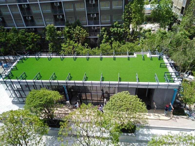 หญ้าเทียมบนดาดฟ้า โครงการพลัมคอนโด รังสิต อไลฟ์