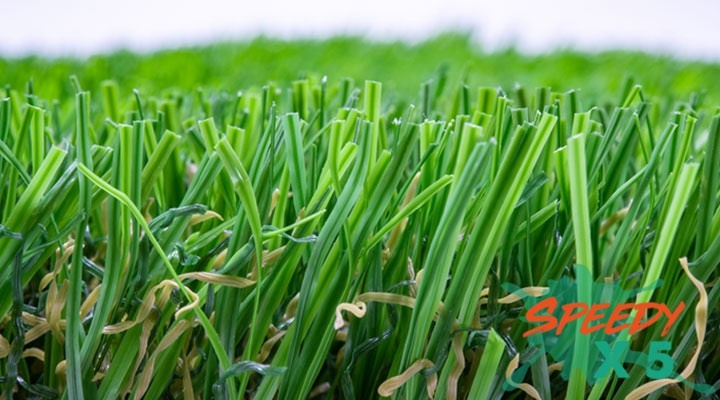 หญ้าเทียมสัตว์เลี้ยง 2 cm. พรีเมียม-ระบายน้ำไว (รุ่น PET GRASS PLUS)