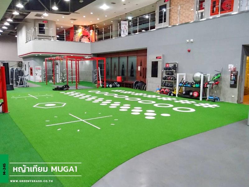 ฟิตเนสหญ้าเทียม Fitness First The Mall Bangkapi