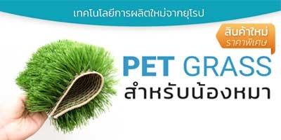 PET GRASS หญ้าเทียมสำหรับสุนัข