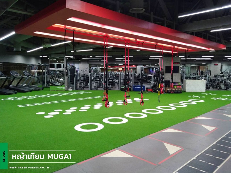 พื้นหญ้าเทียม Fitness First - Future Park Rangsit