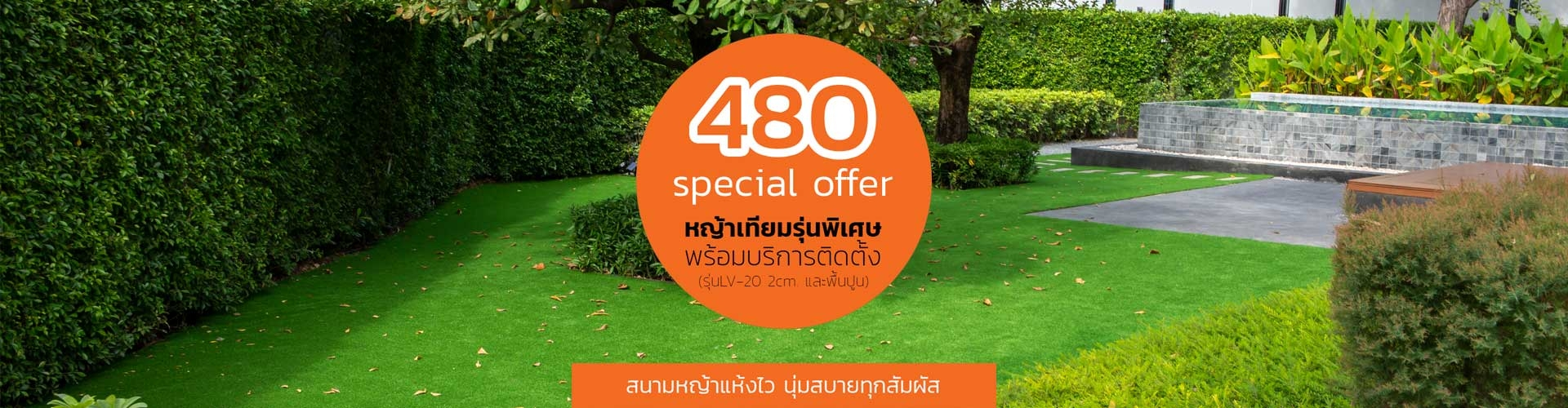 Special Offer 1-2564