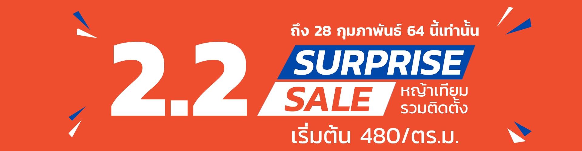 surprise sale 2.2
