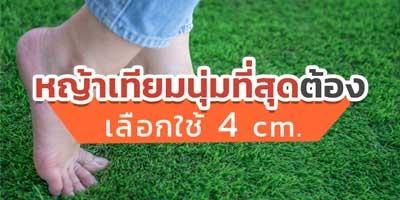 อยากมีสนามหญ้าสวยและนุ่ม เลือกใช้ 4 cm.