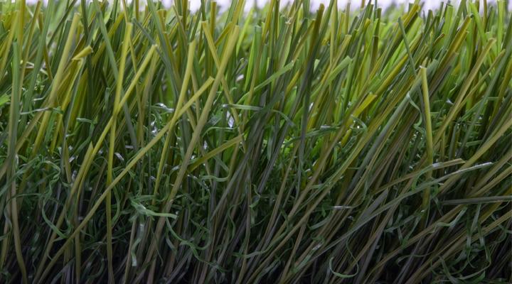 หญ้าเทียมชิพกอล์ฟ 4 cm. พรีเมียม (รุ่น GLX-425)